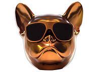 Собака колонка беспроводная Bluetooth S3 dog «CoolDog Французский Бульдог» / Колонка aerobul, цвет золото! Акция