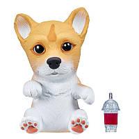 Little Live Pets OMG Интерактивный щенок собачка сквиш корги 28998 Corgi Squishy Puppy so Soft, фото 1