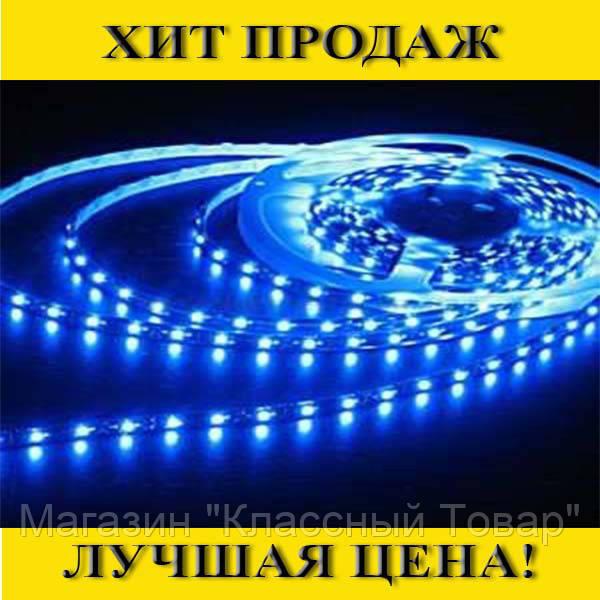 SALE! Светодиодная лента 3528 (60 светодиодов, 12V, Blue)  силикон