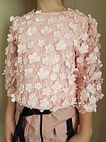 {есть:134,146} Блузка для девочек, Артикул: TL2117 [134], фото 1