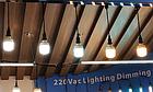 Освещение для птичников под ключ, освещение для бройлеров, диодная лампа HT19, 4700-5000К, фото 2