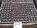 Торфяной субстрат ДОМОФЛОР МИХ 4 / DOMOFLOR MIX 4, 20 литров, фото 4