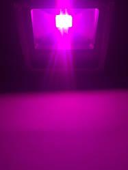 Светодиодный фитопрожектор SL-20G SLIM 20W IP65 (full spectrum led) Код.58822