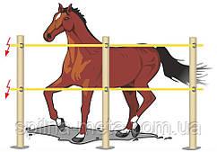 Електропастух Corral B170 для коней, комплект на периметр 200 м (дві лінії провідника)
