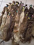Слов'янські волосся в зрізі 40 див. Незабарвлені темні, фото 3
