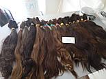 Слов'янські волосся в зрізі 40 див. Незабарвлені темні, фото 9