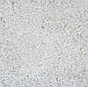 Крошка мармор белая Thassos 1-3 мм