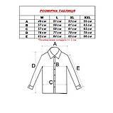 Сорочка чоловіча, прямого крою з довгим рукавом Fabrik Style T2496V4 100% бавовна 43(Р), фото 3