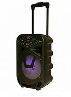 Акустическая система (колонка аккумуляторная) DMS K8-8G