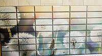 Декоративна пластикова листова панель ПВХ Регул Ніжність 0,4мм 957*477 мм