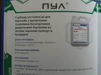 Системний гербицид на Кукурузу ПУЛ аналог Прима. Послевсходовый гербицид для Кукурузы 0,5л/га. Тара 10л.