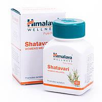 Шатавари Shatavari - 60 капсул (Индия)