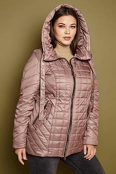Женская демисезонная короткая куртка 252 / размер 50-62 / цвет капучинно
