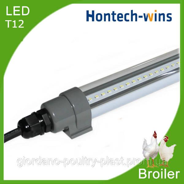 Освещение птичника под ключ, освещение для бройлеров, диодный светильник для птичника T12