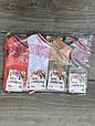 Короткі з квіткової павутиною жіночі шкарпетки бавовна Kardesler 35-40 12 шт в уп мікс 4х кольорів, фото 2