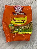 Пшениця цільнозернова Сто Пудов 200 г
