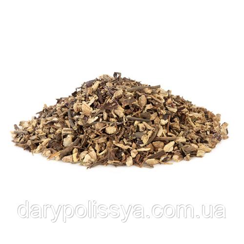 Ехінацея пурпурова корінь (Эхинацея пурпурная корень), 50г