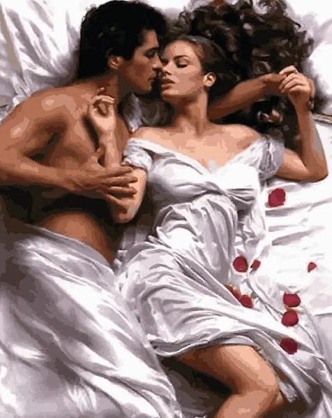 Картина по номерам Страсть в лепестках розы, 40x50 см., Babylon