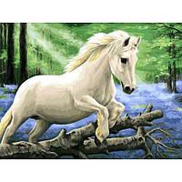 Картина по номерам Белоснежка В лесу диких гиацинтов 30х40 см КОД: RN 360