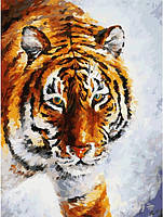 Картина по номерам Белоснежка Тигр на снегу 30х40 см КОД: RN 382
