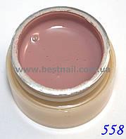 Гель-краска CANNI 5мл №558  лилово-серая, фото 1
