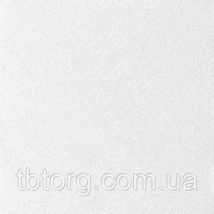 Подвесной потолок ARMSTRONG ULTIMA Tegular  1200х600х19мм, фото 2