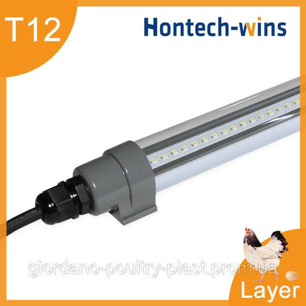 Светильник для курей несушек, диодный светильник для птичника T12