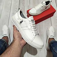Polo (поло) мужские кожаные кеды,туфли,кроссовки (натуральная кожа) philipp plein armani перфорация