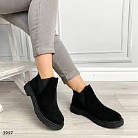 Демисезонные  ботинки на резинке низкий ход  код 3997, фото 1