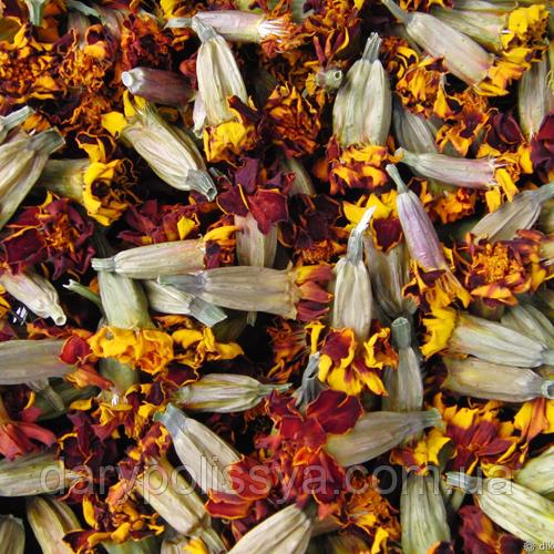Чорнобривці квіти (Бархатцы цветы),  100г