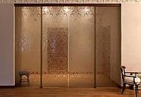 Раздвижные двери в стеклянном проеме из стекла бронза с рисунком