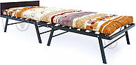 Кровать раскладушка с ламелями и матрасом (до 120 кг), фото 1