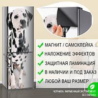 Наклейка магнитная на весь холодильник с собакой далматинцем, 180 х 60 см, Лицевая