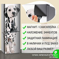 Виниловая магнитная наклейка с собакой далматинцем на холодильник, магнит 180 х 60 см, только Лицевая сторона