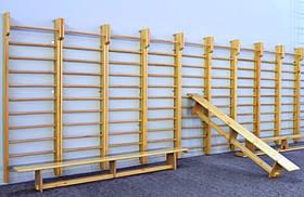 Шведська стінка спортінвентар для шкіл та дитячого садка