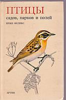 Птицы садов, парков и полей Иржи Феликс