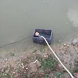 Насос для перекачування води REWOLT занурювальний 12В (RE SLW-12V), фото 2