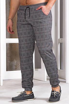 Мужские спортивные штаны 740 с манжетом коричневые, фото 2
