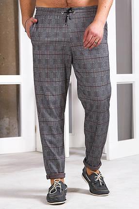 Мужские спортивные штаны 742 коричневые, фото 2