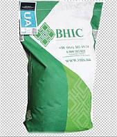 Семена подсолнечника Заграва/насіння соняшника Заграва(Екстра)