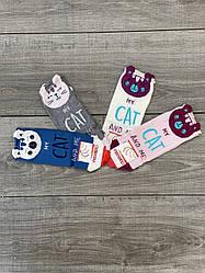 Короткие женские носки Ceburaska хлопок с котиком ушки выглядят 35-40 12 шт в уп микс 4 цветов