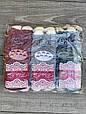 Шкарпетки короткі жіночі бавовна Pier Esse з котиком вушка виглядають 35-40 12 шт в уп мікс з 4х кольорів, фото 3