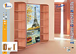 Шкафы-купе от 1810 мм до 2690 мм, три двери, гл. 450, фото 10