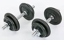 Гантелі розбірні (2 шт) сталеві 20 кг в пласт. кейсі Record TA-7230-20, фото 2