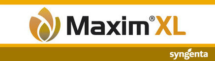 Протравитель Максим XL 035 FS, фото 2