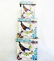 Шкатулка-коробка набор из 3-х — Птица SH31383-079