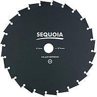 Нож SEQUOIA (GB24-255)
