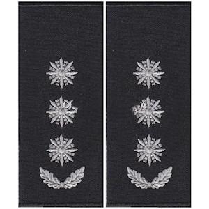 Погоны полиции полковник (муфта)