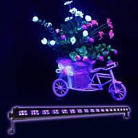 Световой LEDUV прибор New Light LEDUV-18 18*3W ультрафиолет