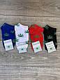 Жіночі короткі шкарпетки бавовна Montebello коноплі Ганжа марихуаною Пінк 35-40 12 шт в уп мікс, фото 3